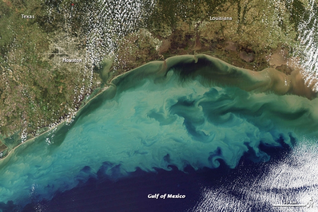 Sediment in the Gulf of Mexico --- http://earthobservatory.nasa.gov/IOTD/view.php?id=41237